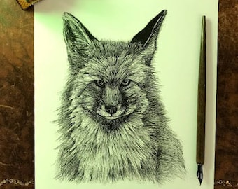 Pen and Ink Fox Portrait