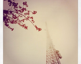 Seattle square photo, seattle square print, fog photo, red branches square photo, radio tower photo