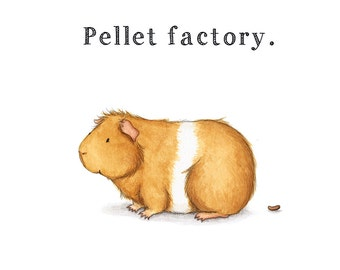 Pellet Factory Cute Guinea Pig Art Print