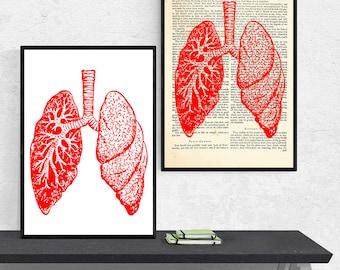 Lungs Anatomy Art, Anatomy A3 Print, Anatomy Gift, Anatomy Print, Anatomy Poster, Anatomy Wall Art, Medical Student Gift, Anatomical Art
