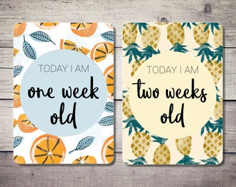Baby Milestone Cards, Fruit