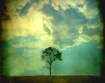 Tree and Sky Photo, Surreal, Abstract Art, Clouds, Blue, Yellow, Black, 5x5 inch Fine Art Photograph, Premonition