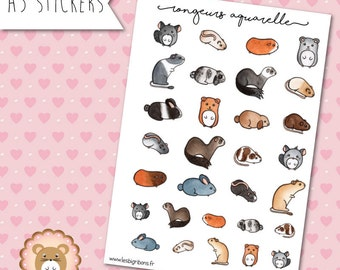 """Stickers """"Rongeurs Aquarelle"""""""