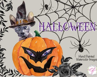 Halloween watercolor Clipart ,pumpkin,cat,skeleton,black rose,feather