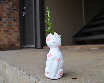 Scarlet The Cat Succulent Planter/Vase