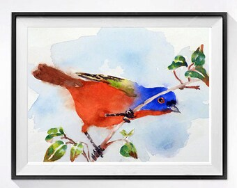 Bird Art Watercolor Print Wildlife nature art Garden painting watercolors Bird illustration Painting bird Bird wall decor Aviary art prints