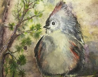 Young Bird Painting