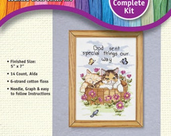 Janlynn Counted Cross-Stitch Kit: God Sent Special Things Our Way