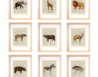 Safari animals print-zoo animals print-zoo animals print set of 9-zoo animals dictionary prints-nursery print-children wall art-print-DP223