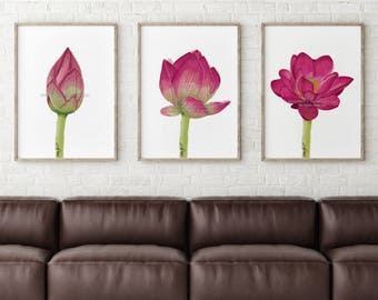 Lotus Print, Flower Wall Art, Lotus Flower, Yoga Print, Lotus Art, Lotus Flower Print, Flower Print, Lotus Painting, Living Room Wall Art
