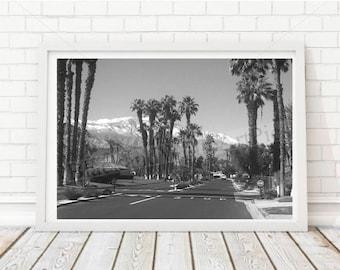 Palm Springs Community