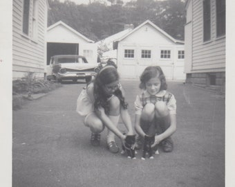 Little Girls with New Kittens Vintage Photo / Original 1950s Photograph / Sisters Snapshot / Nostalgic / Retro / Vernacular / Kitten Photo