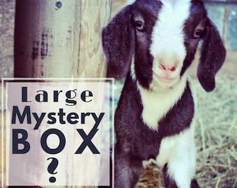 Large Mystery Box Grab Bag Surprise Box Clearance Sale Soap Box Bath Handmade Artisan Goat Milk Soap Homemade Cold Process Soap BOGO Gift