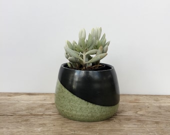 Handmade unique green and black porcelain planter ready to gift or use. Plant pot. Gas fired planter.