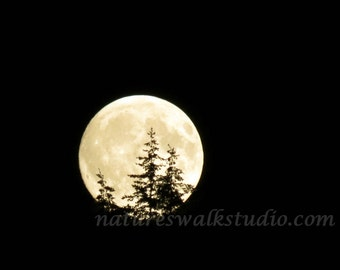 Moon Rising Through Tree Lined Hills, Mystical Full Moon, A Fine Art Photograph