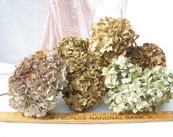 6 Jumbo Dried hydrangea flowers- Antique gold/ brown/ green/ red- rustic flowers for vase or crafts- Farmhouse floral decor