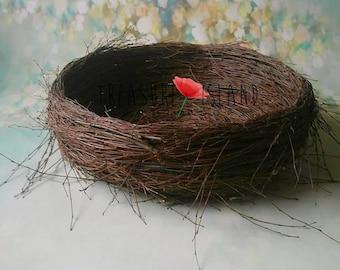 Bird Nest Stork NEST birch-tree natural nest Baby Birds Crafts Supply sitter nb photo props photography props