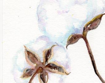 Cotton Bolls Watercolors Paintings Original,  Minimalist watercolor, Cotton Farmhouse Decor, Botanical Wall Art 5 x 7 cotton boll painting