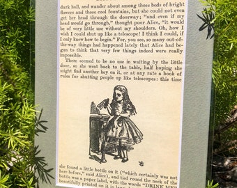 Alice in Wonderland 4x6 matted book illustrations
