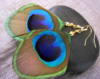 Earrings Peacock feather and gold plated.