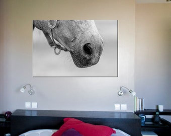 Horse Decor/closeup horse photography in canvas art/white horse print in black and white photography/canvas print/large wall art