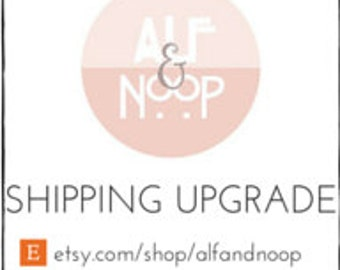 UPGRADE to Express USPS Shipping