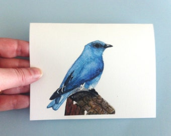 Watercolor Bird Card - Mountain Bluebird