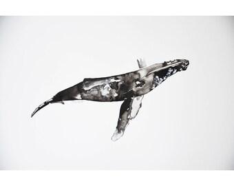 Whale, handmade, India ink