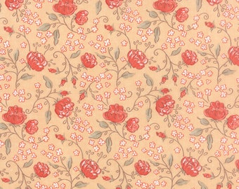 Moda SWEETNESS Quilt Fabric 1/2 Yard By Sandy Gervais - Blush 17851 15