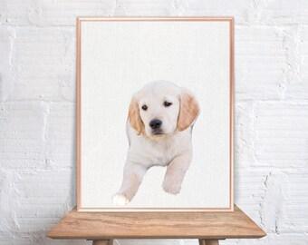 Puppy wall art / Dog home decor / Dog Print / Puppy / Dog Art / Dog Wall Decor #70
