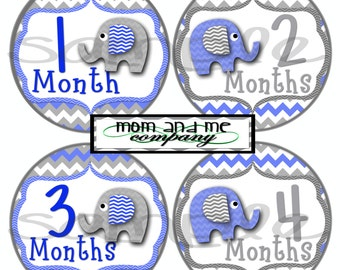 Baby Boy Elephant Monthly Stickers Baby Stickers Baby Shower gift 1- 12 Months baby boy sticker infant monthly stickers blue and grey decals