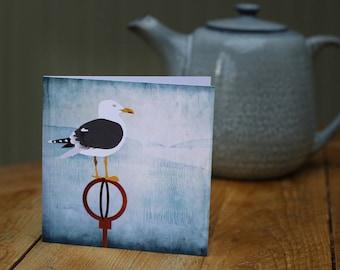 Herring Gull in Portobello card