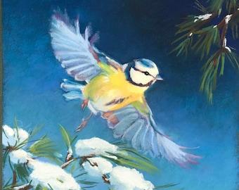 Original Bird Painting Blue Tit Bird Art