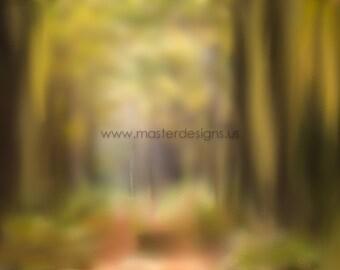 Photoshop Textures - Digital Overlays