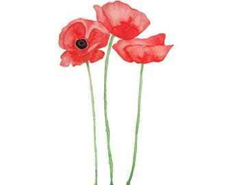 Poppies Watercolor Print (FREE U.S. Shipping)