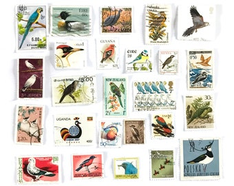 25 x Bird postage stamps - all different from 20 countries, off paper - Tropical Garden Birds of Prey - for collecting, crafts, scrapbooking