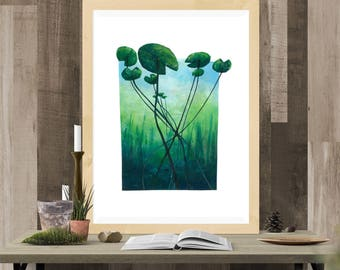 Poster - Illustration - Water Lilies