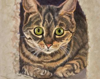 Tabby Cat Art, Tabby Cat Print, Tabby Watercolor Print, Cat Wall Art, Cat Art Print, Cat Portrait, Cat Painting by P. Tarlow