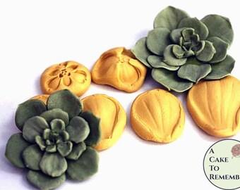 Silicone succulent mold or veiner for gumpaste succulents. Cake decorating petal veiner. M201