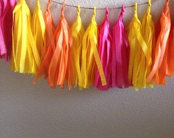 Tutti Fruity Tassle Garland/ Tassel garland- 6 feet Tissue Paper garland-