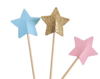 Twinkle Twinkle Little Star Cupcake Toppers, Gender Reveal Party, Wild One Birthday - No803