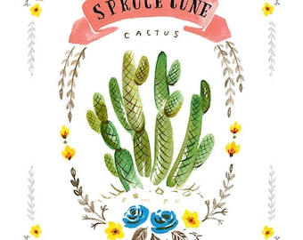 Spruce Cone Cactus Print, Spruce Cone Art Print, Cactus Illustration, Cactus Print, Cactus Fine Art Print