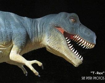 T Rex Birthday Card, Dinosaur Photos, Tyrannosaurus Rex, Boys Room Decor, Dinosaur Greeting Card, Dinosaur Birthday Card
