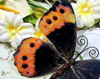 Butterfly Embellishments Sunset