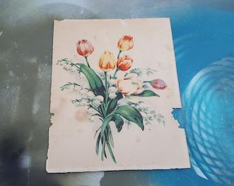 Antique Print, Floral Print, Tulip Print, Vintage Print, 30s Print, Vintage Decor, Antique Art, Tulips, 30s Decor, Vintage Wall Decor