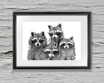 Raccoon Pen and Ink Print Woodland Animals coon artwork racoon