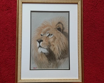 Lion pastel pencil drawing, beautiful lion drawing, lion pastel drawing