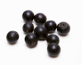 10 count 12mm dark brown black seed nut beads destash bead lot vintage