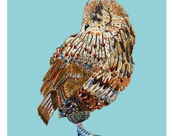 Little Owl giclee print