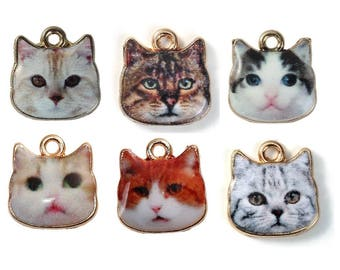 Cat Charm Collection - C2603